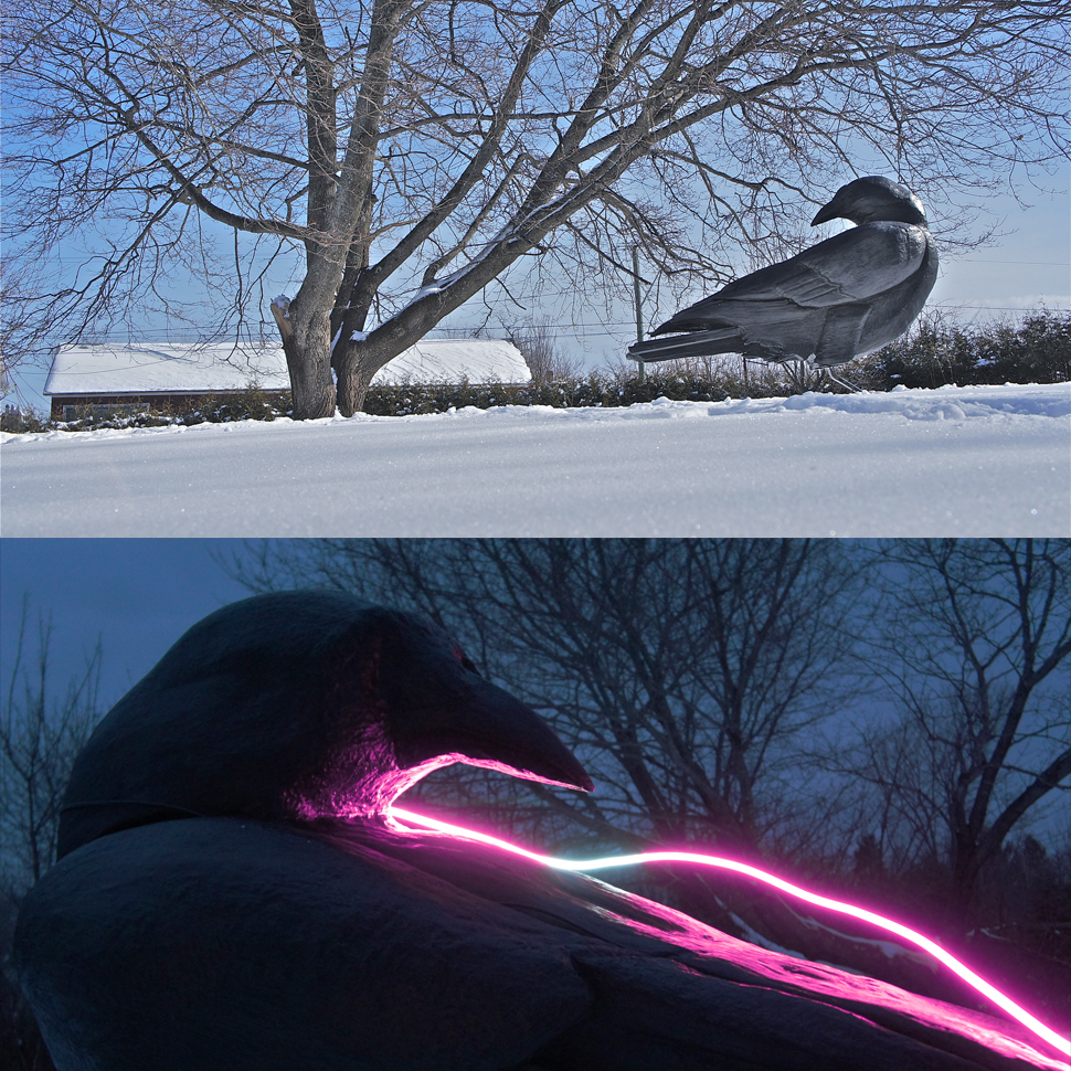 Ryan Livingstone Contemporary Canadian Artist Crows New Brunswick Neon Sculpture Neon Light Crow Public Art