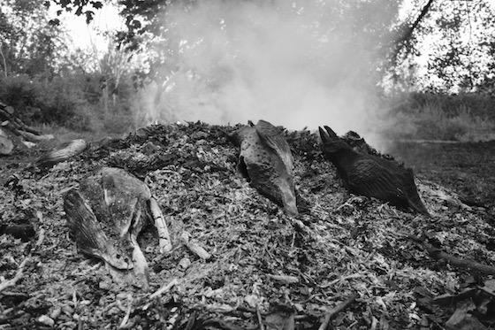 Ryan Livingstone Contemporary Canadian Toronto Artist in the studio New Brunswick Contemporary Ceramic Art Crows Pit Firing Smoke Ahses