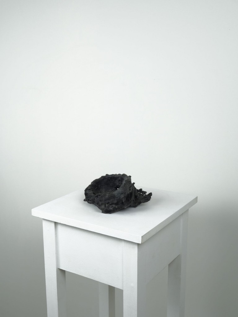 Ryan Livingstone Canadian Artist Sculptor Contemporary Art Crow Sculpture From The Landscape Ceramics Clay Ceramic Art Gas Kiln Burnt Barn Fallen Barns Birds Nests Porcelain Ceramic Sculpture Toronto New Brunswick Art Inspired by Our Relationship with Nature